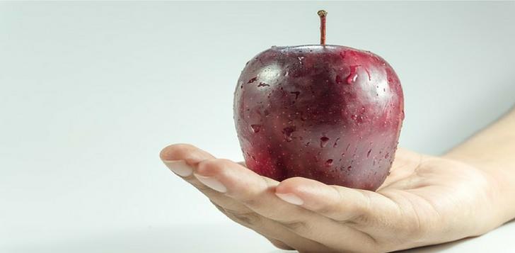 dietas para emagrecer rápido e com saúde